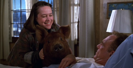 misery novel and annie wilkes